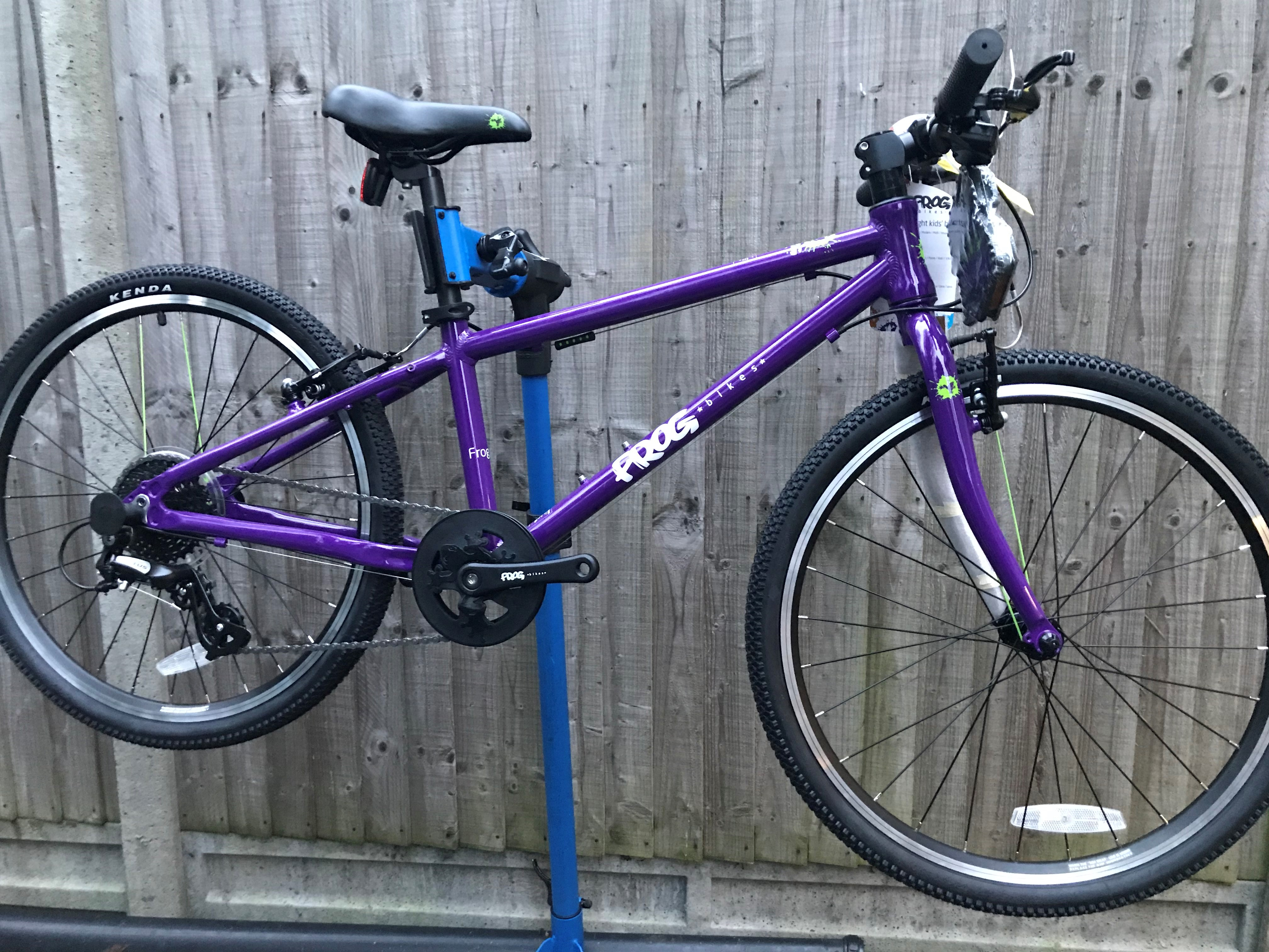 Frog 55 purple version